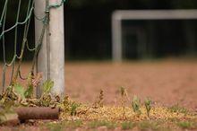 Власти Челябинска предложили владельцам стадиона «Калибр» обмен