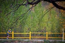 Новосибирск может остаться без биатлонного комплекса