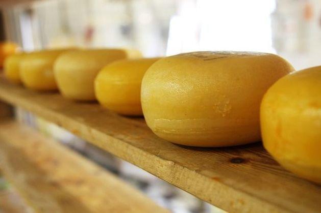 Союз потребителей заявил, что 70% российского сыра и масла – фальсификат
