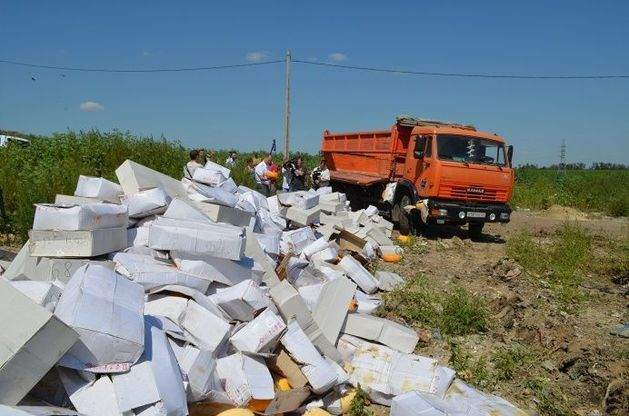В России началось массовое уничтожении санкционных продуктов
