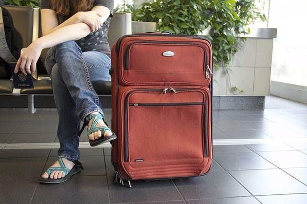 Россельхознадзор забрал уже полтонны продуктов из сумок пассажиров самолетов