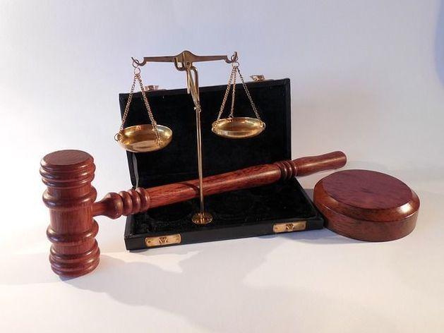 Адвокаты Васильевой просят об УДО и нашли ей работу юристом