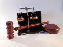 Областной суд оставил Александра Путина под стражей