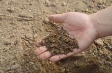 Китай подписал контракт на строительство завода удобрений в Пермском крае