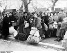 Власти Венгрии направили войска на границу с Сербией