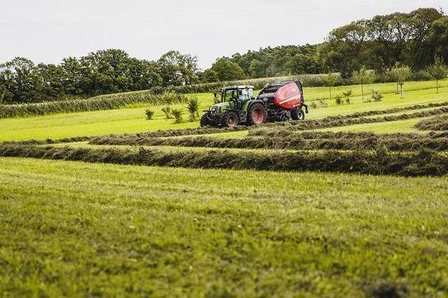 Предприниматели ЮАР договорятся о поставках сельхозпродукции в регион