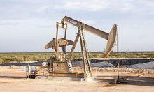 Две местные компании нашли месторождения нефти в Новосибирской области