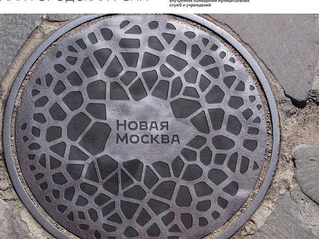 Тина Канделаки представила логотип Новой Москвы за 15 млн руб.
