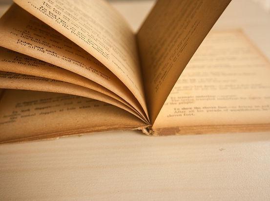 Что искали в библиотеке украинской литературы?