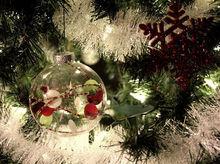 Новогодние елки крымчанам отправят из Ростовской области