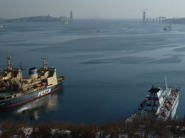 Турция не пускает десятки российских судов через Босфор