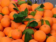 В Челябинске подешевели мандарины. Таков итог мониторинга торговых сетей