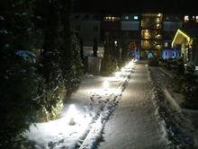 Чем запомнилась новогодняя ночь ростовским бизнесменам?