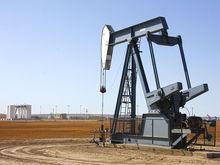 Нефть на дне: почему аналитики предрекают $20 за баррель