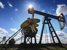 Bloomberg: к концу года нефть подорожает на 50%