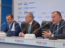 В Красноярском крае появится самая большая теплица в Сибири