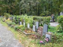 В Челябинске пройдет конкурс по выбору подрядчика для инвентаризации кладбищенских земель