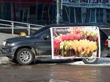 Продавцы тюльпанов в Красноярске не подчинились запрету мэрии