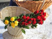 Идеи для подарков на 8 Марта от семи известных нижегородок