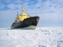 Круизы на атомном ледоколе готовят туристические компании для Новосибирска