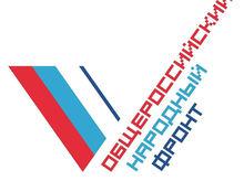 Ростовские блогеры выявили коммерческие связи активистов ОНФ