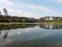 В Казани часть парка у озера Лебяжье вырубят под строительство гостевых домов