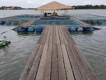 Шесть озер Челябинской области сдали в аренду рыбоводам