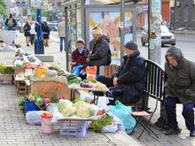 В Казани ликвидировали стихийные рынки на улице Фучика