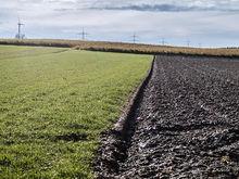 В администрации Златоуста прошли обыски: искали документы по продаже земель