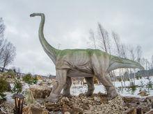 Парк динозавров «Юркин Парк Трэвел» откроется в Казани 5 июня