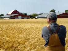 66 начинающих фермеров Татарстана получат 97 млн руб. грантов