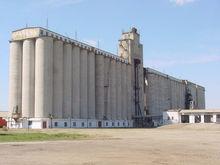 Три челябинских агрохолдинга намерены инвестировать в Брединский элеватор