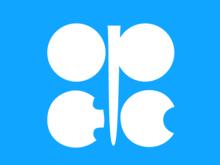 Страны ОПЕК не договорились о добыче нефти, но назначили нового главу