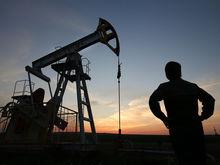 81% малых и средних предприятий Татарстана не рассматривает возможность экспорта