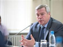 Депутаты заранее одобрили отчет губернатора Ростовской области по итогам 2015 года