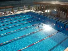 Государственная Дума изучит государственно-частное партнерство в сфере спорта на Дону