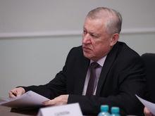 Мошаров и Тефтелев высказались о перспективе возвращения прямых выборов мэров