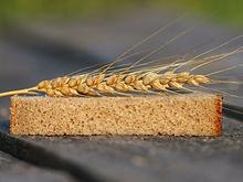 Новосибирская область сделает пробные поставки пшеницы в Китай
