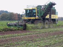 «Южуралкондитер» одобрил покупку 100 тысяч кв. м земли