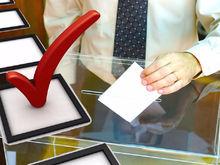 Зарубежные наблюдатели прибыли в Красноярск для контроля выборной кампании
