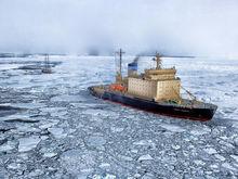 Как искать нефть в Арктике по-новому придумали ученые из Новосибирска