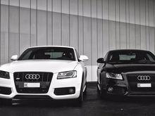 Компания Audi принялась искать нового дилера для Новосибирска