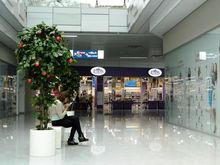 Две нижегородские компании вошли в Топ-100 крупнейших владельцев торговых центров в России