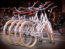 В Нижнем Новгороде планируется создать общественный городской велопрокат