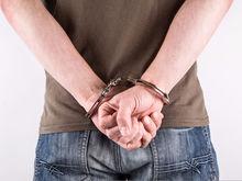 Убийцу бизнесмена Заварухина будут судить по трем статьям