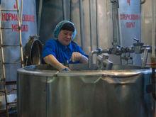 Завод «Урал Молоко» в Южноуральске продан с торгов своему арендатору