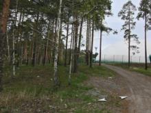 Крупный горнолыжный комплекс в Екатеринбурге сменил владельца