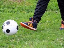 Компании-спонсоры нижегородских спортивных команд лишатся части льгот