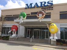 Татарстан планирует поставлять сухое молоко на заводы корпорации Mars