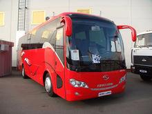 Новосибирские власти раскрыли необходимость в закупке китайских автобусов